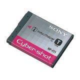 Sony Battery Np Ft1 Oem For Sony Dsc T1 T5 T9 T10 T33 L1 And M1 Sony Diskon