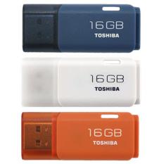 Toko Toshiba Flashdisk Hayabusa 16Gb Lengkap Di North Sumatra