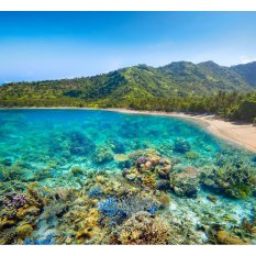 Travel Tour - 3D2N Lombok Tour