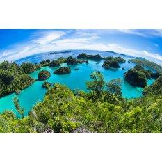 Travel Tour - 4D3N Raja Ampat Tour