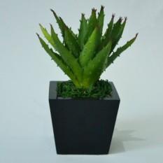 Spesifikasi Venus Gallery Aloe Vera 03 Green Artificial Flower Bagus