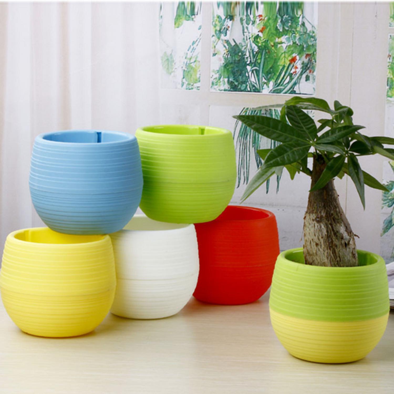 Mini Pot Bunga Hias Kaktus Tanaman Isi 5pcs Pot Bunga Tanaman Plastik Murah Pot Bunga Unik Dekorasi Pot Bunga Multi Warna