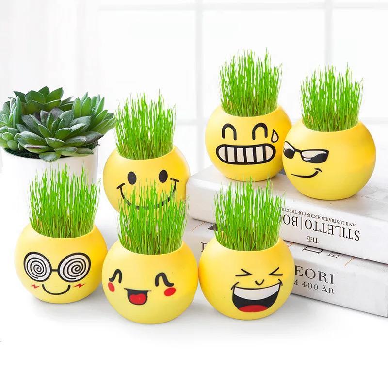 Tk R067 Pot Bunga Lucu Gratis Bibit Mini Motif Emoticon Vas Untuk