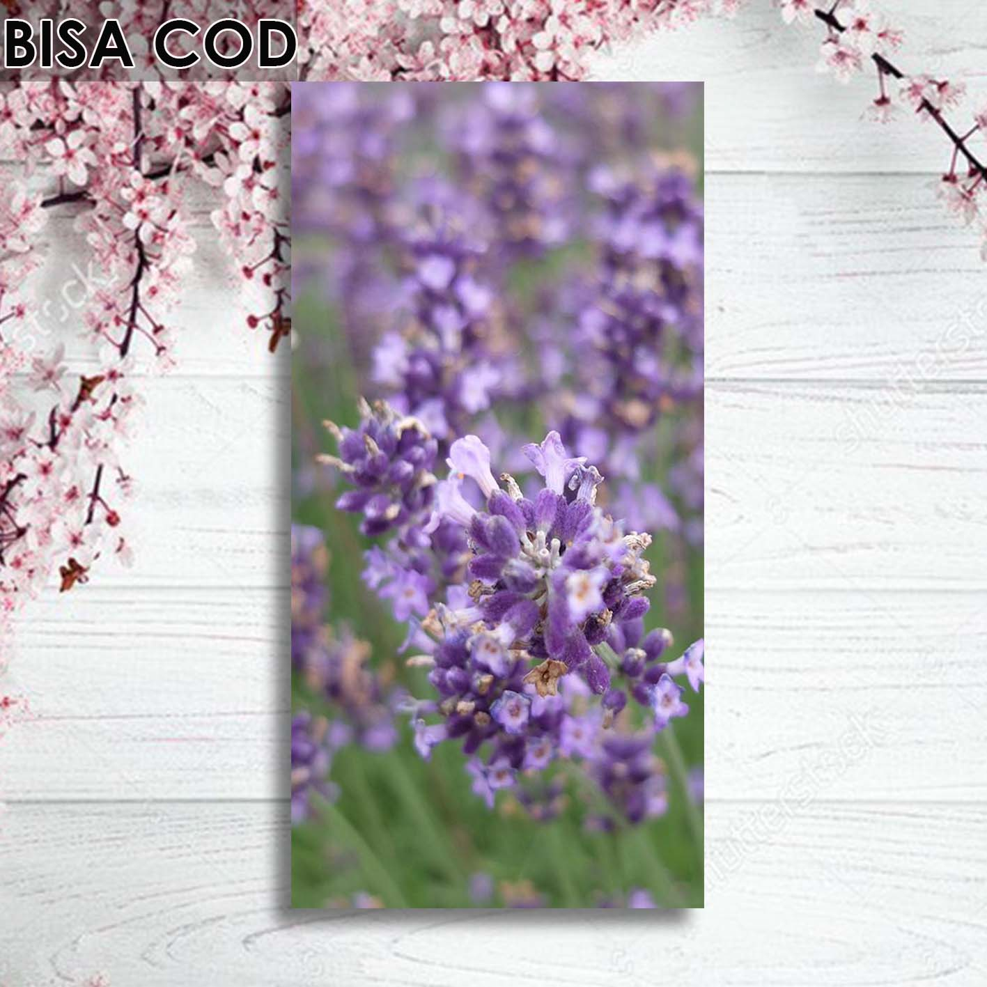 Fantastis 12+ Gambar Bingkai Bunga Ungu - Gambar Bunga Indah