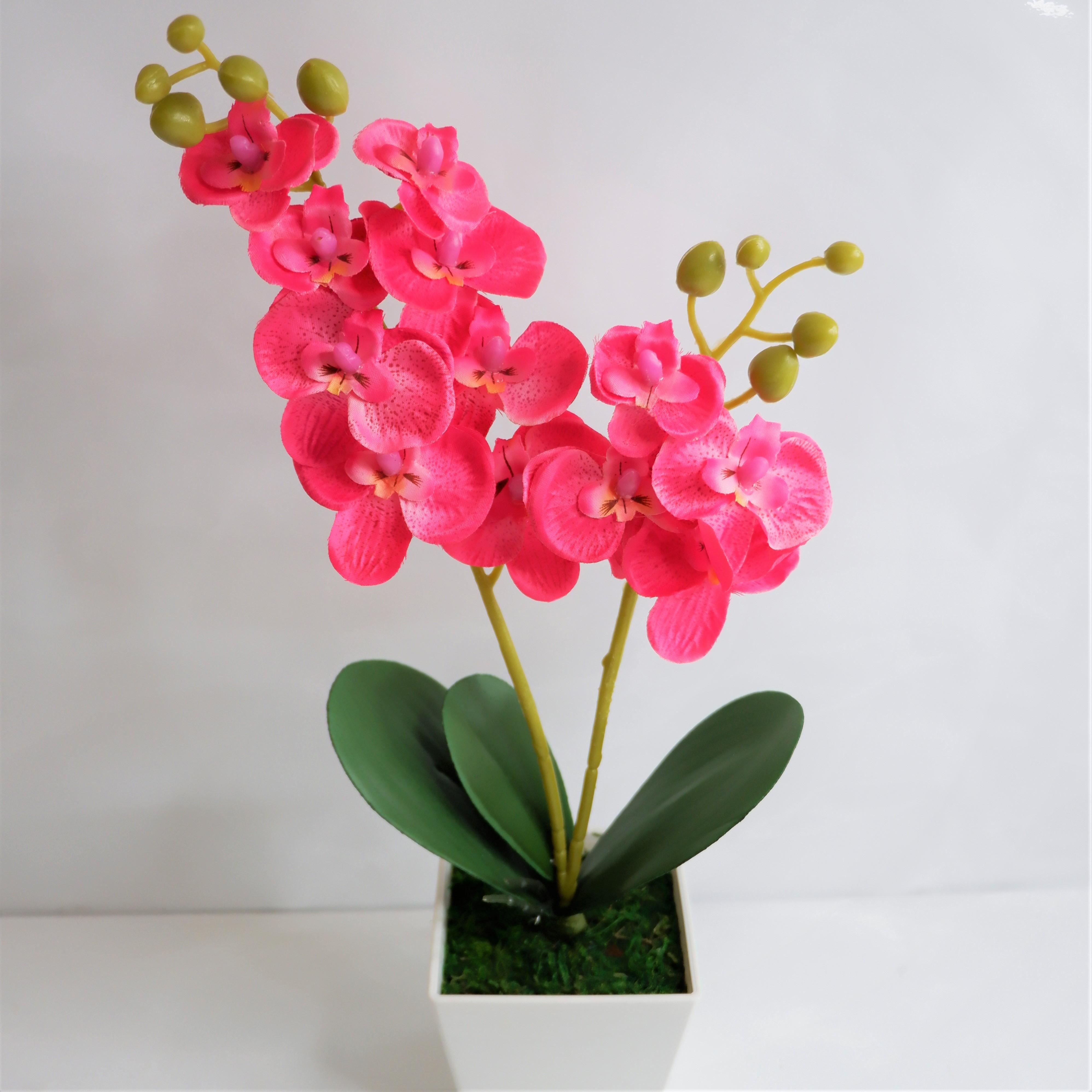 Bunga Flower Store Buket Bunga Anggrek Putih A 098 Termasuk Vas Pajangan Bunga Bunga Plastik Bunga Hias Bunga Artifisial Tanaman Hias Souvenir Bunga Dekorasi Rumah Lazada Indonesia